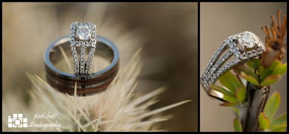 The Ring - Wedding Details - Joshua Tree California Elopment